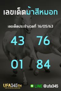 เลขเด็ด ม้าสีหมอก